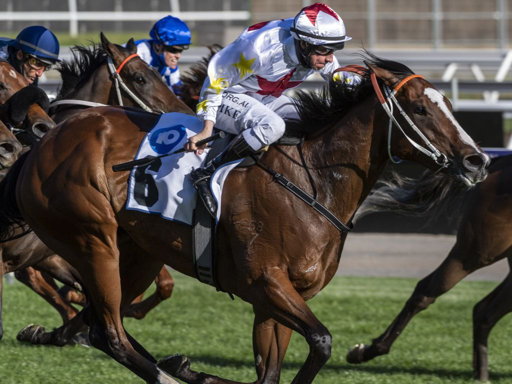 3YO Filly Written Beauty Becomes The 40th Stakes Winner For Written Tycoon.